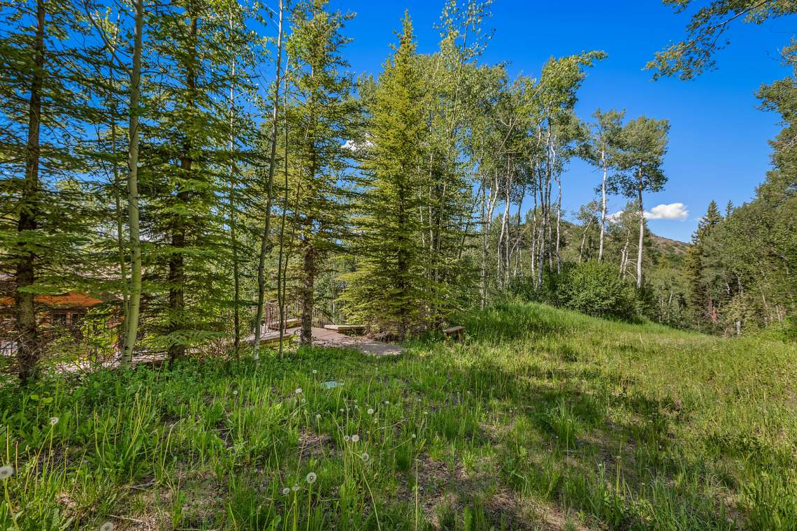 32_440_Spruce_Ridge_Snowmass032_mls